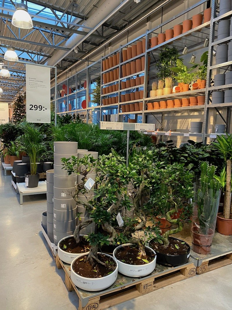 image - ikea almhult garden