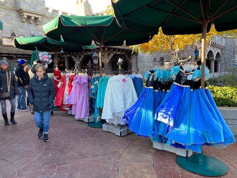 image - disneyland paris princess dress up costume anna