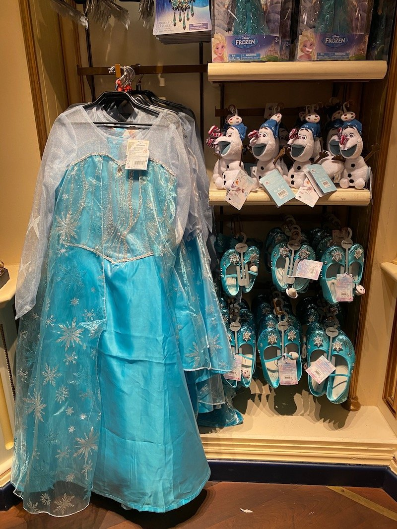 image - elsa frozen dress up costume dlp from caseys corner