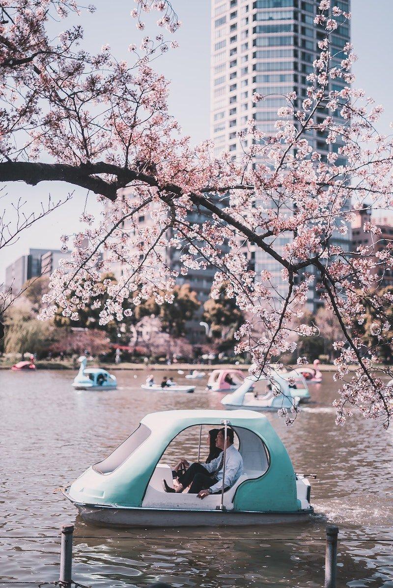 image - ueno park by bantersnaps-iHU3ic36yeY-unsplash