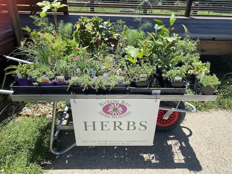 image - summerland farm byron bay herbs stall
