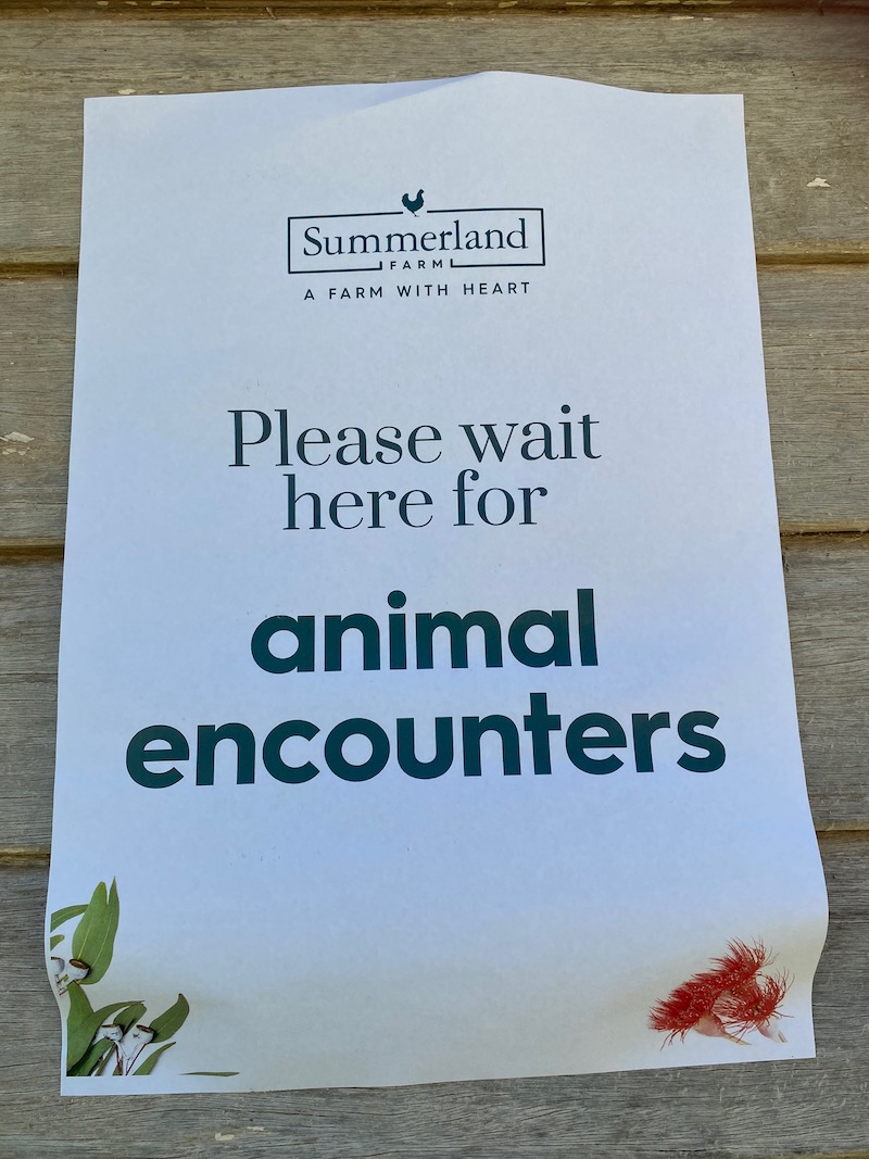 image - summerland house farm animals