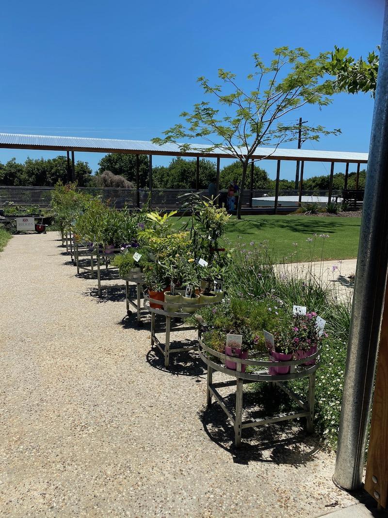 image - summerland house farm shop plants