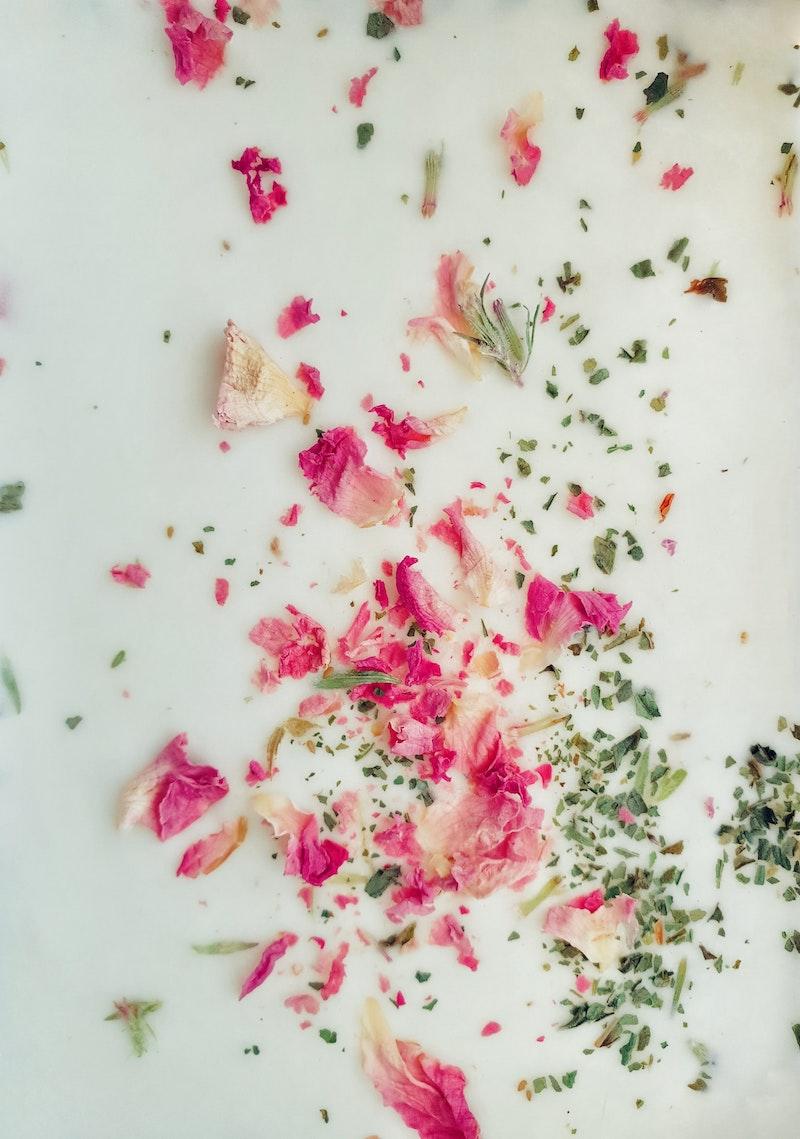 image - damask rose on yoghurt by hasan-almasi