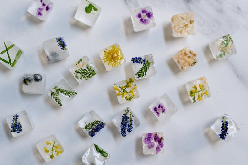image - dried edible flower ice cubes by pexels-cottonbro