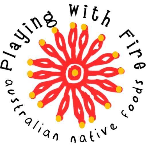 image - playing with fire native bush foods