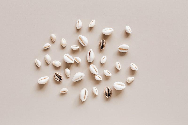 image - puka shell necklace by pexels-karolina-grabowska