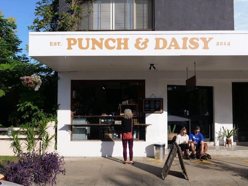 image- punch and daisy mullumbimby